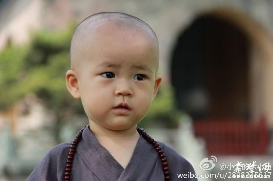 """武当山玉虚宫""""小和尚""""萌翻网友(组图)"""