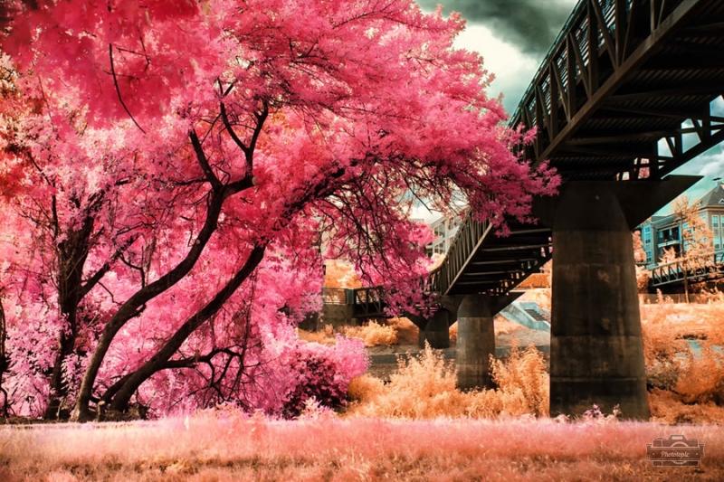 风光摄影:童话镇
