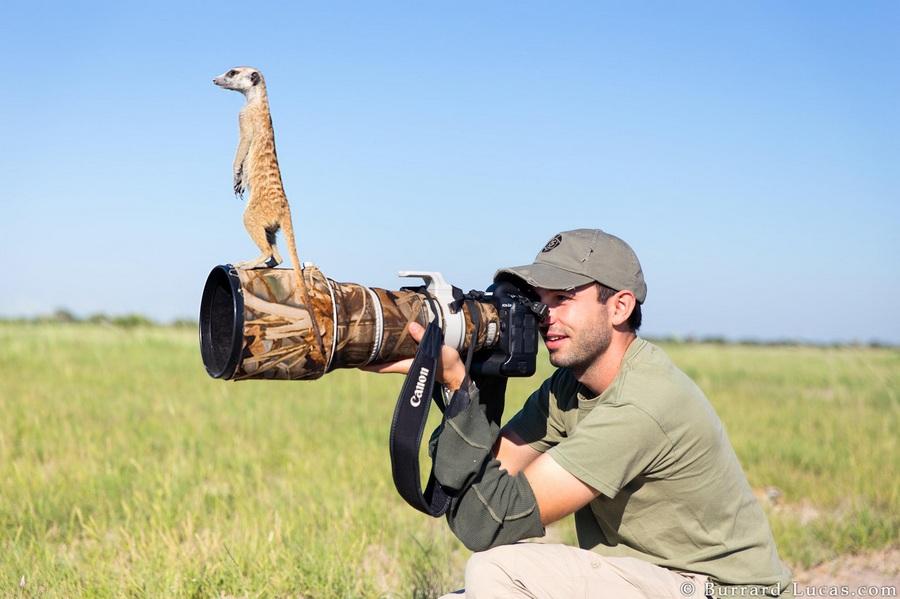 纪实摄影:卢卡斯和他的动物朋友