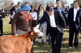 习近平参观阿根廷共和国庄园 主人安排精彩演出欢迎