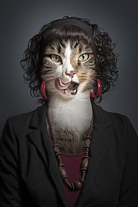 观念摄影:猫面人