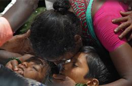 印度一校车与火车相撞致重大伤亡