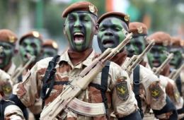 科特迪瓦举行独立日纪念活动 总统出席阅兵式