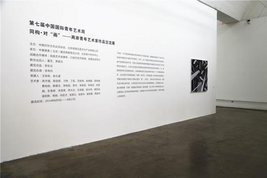 """两岸艺术家""""对画""""为青年艺术周揭幕"""
