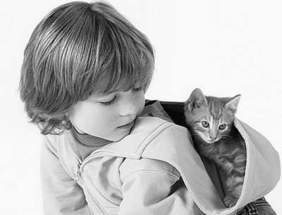 哈佛心理专家支5招让孩子拥有一颗善良的心
