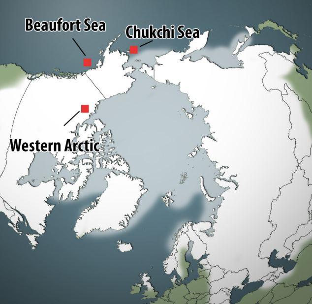 北极积雪厚度60年内减少一半(图) - 月亮飞船 - 欢迎光临月亮飞船的博客