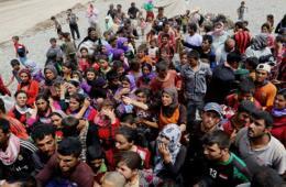 伊拉克雅兹迪教民讲述:女人孩子被极端组织活埋