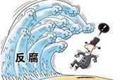 """反腐不会因""""官娇""""转向"""