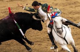 环球图片一周精选 西班牙斗牛士骑马刺公牛场面激烈
