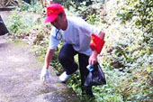 市委书记捡垃圾是个高风险的活儿