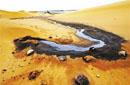 """9月9日热点舆情:排污沙漠腹地 责任不可""""荒漠"""""""