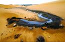 评官员人格担保腾格里沙漠未污染:沦为笑柄