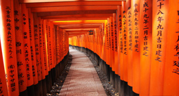 日本京都价值过亿的千本鸟居(组图)