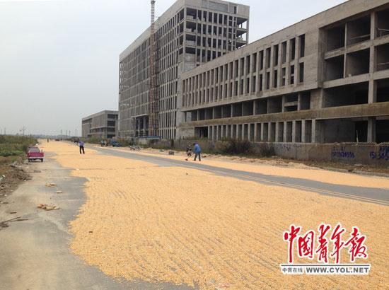 """河南遂平""""气派""""新政府大楼停工 将被拍卖(图)"""