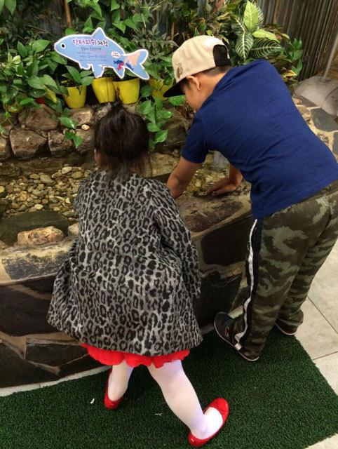 王诗龄与石头兄妹韩国逛动物园