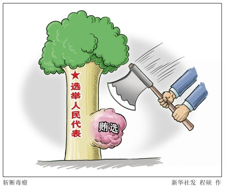湖南衡阳贿选案暴露问题:人大代表与人民严重脱节