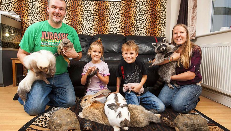 英国家庭住独栋别墅养145只动物