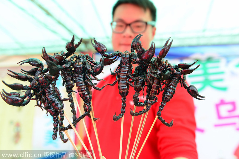 """义乌台湾美食节惊现""""昆虫宴"""""""