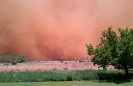南非:沙尘暴袭击布隆方丹地区