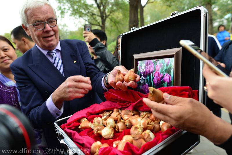 """彭丽媛命名""""国泰郁金香""""种植仪式在北京植物园举行"""