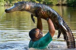 美国男子常与鳄鱼一起游泳