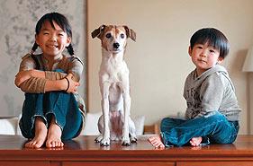 家庭日记:日本摄影师记录幸福生活瞬间