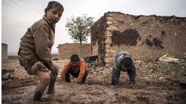 土叙边境8万难民入冬仍住帐篷 儿童改建鸡舍御寒
