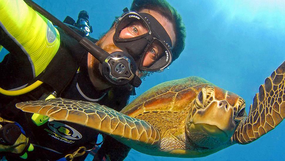 澳男子潜水与海底动物自拍走红