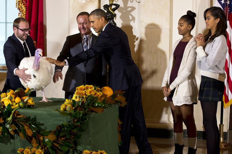 感恩节前夕 奥巴马白宫赦免火鸡