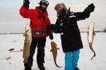 实拍加拿大冰面上钓大鱼