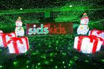 男子用LED灯扮圣诞仙境