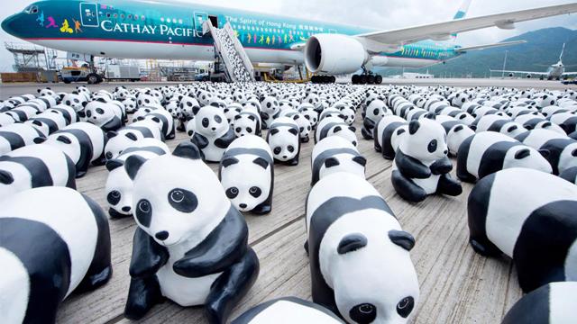 世界之旅:1600只纸熊猫将抵达马来西亚