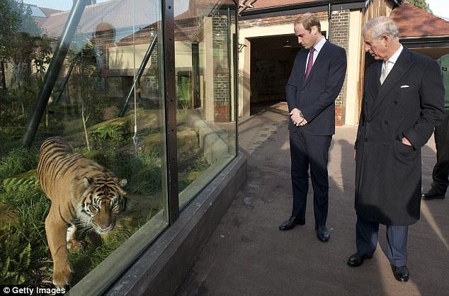 英国皇室猎物房照片曝光 威廉遭批言行不一
