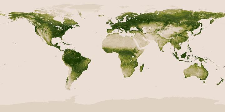NASA极地轨道卫星捕捉全球植被覆盖情况