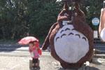 日本老爷爷做巨型龙猫
