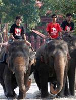 泰国真实的生活 网友:看完我哭了