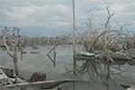 遭洪水淹没25年小镇重现