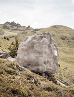 阿尔卑斯山坡大石块实为精致舒适小木屋