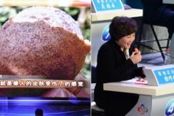 武汉电视问政 区长现场吃掉被污染橘子