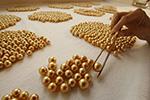 探访菲律宾黄金珍珠养殖