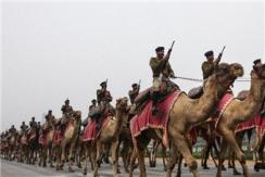 """印度举行共和日阅兵彩排 造型""""奇葩"""""""