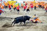 哥斯达黎加另类斗牛:斗牛还是斗人?