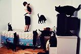 抓拍真正的爱猫狂人