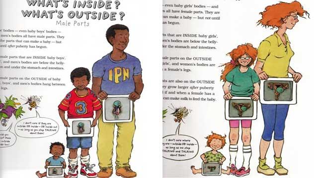 美国7岁孩子的性教育读物