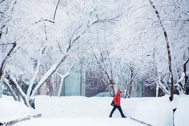 新西伯利亚:雾气下的极寒世界