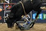 图揭美国骑牛大赛险象环生