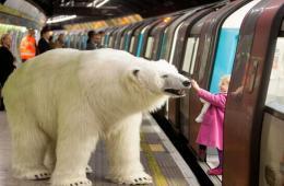 """伦敦街头惊现""""北极熊"""" 形象逼真吓坏路人"""