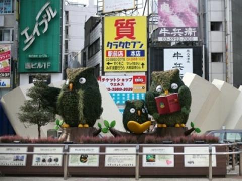 蒋丰带你逛日本:猫头鹰守护的幸福池袋