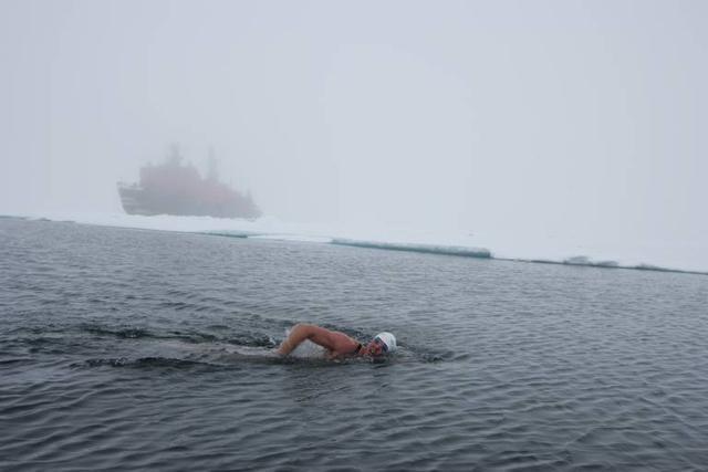 男子南极游泳破纪录 零下1.7℃海水中游20分钟