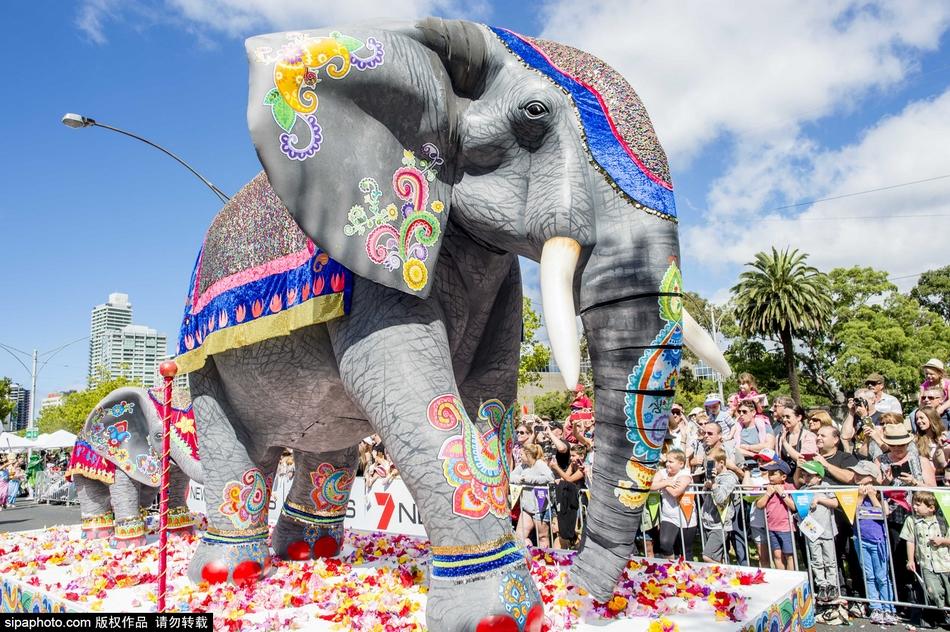 澳大利亚蒙巴节:热情游行 全民狂欢